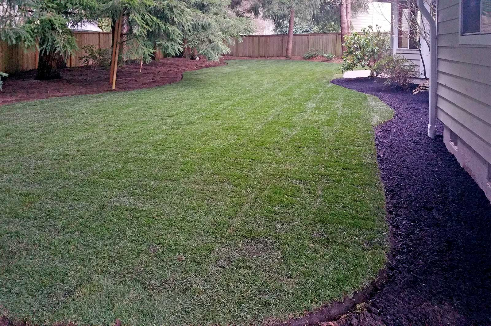 Pictures of our (Sod Replacement & Patching) work ...